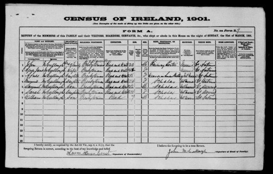 Ireland 1901 Census