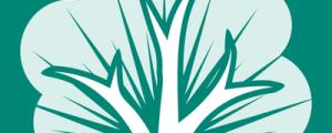 logo - RootsMagic tree
