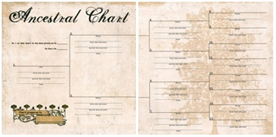 12 generation pedigree chart