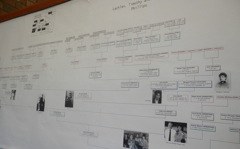 Genealogy Wall Chart Printers