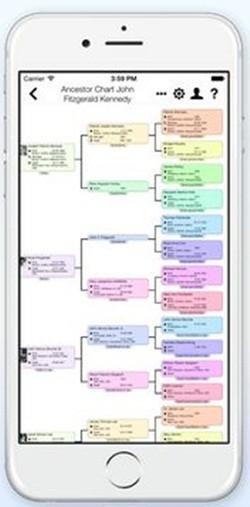 app - MobileFamilyTree screenshot #2 250