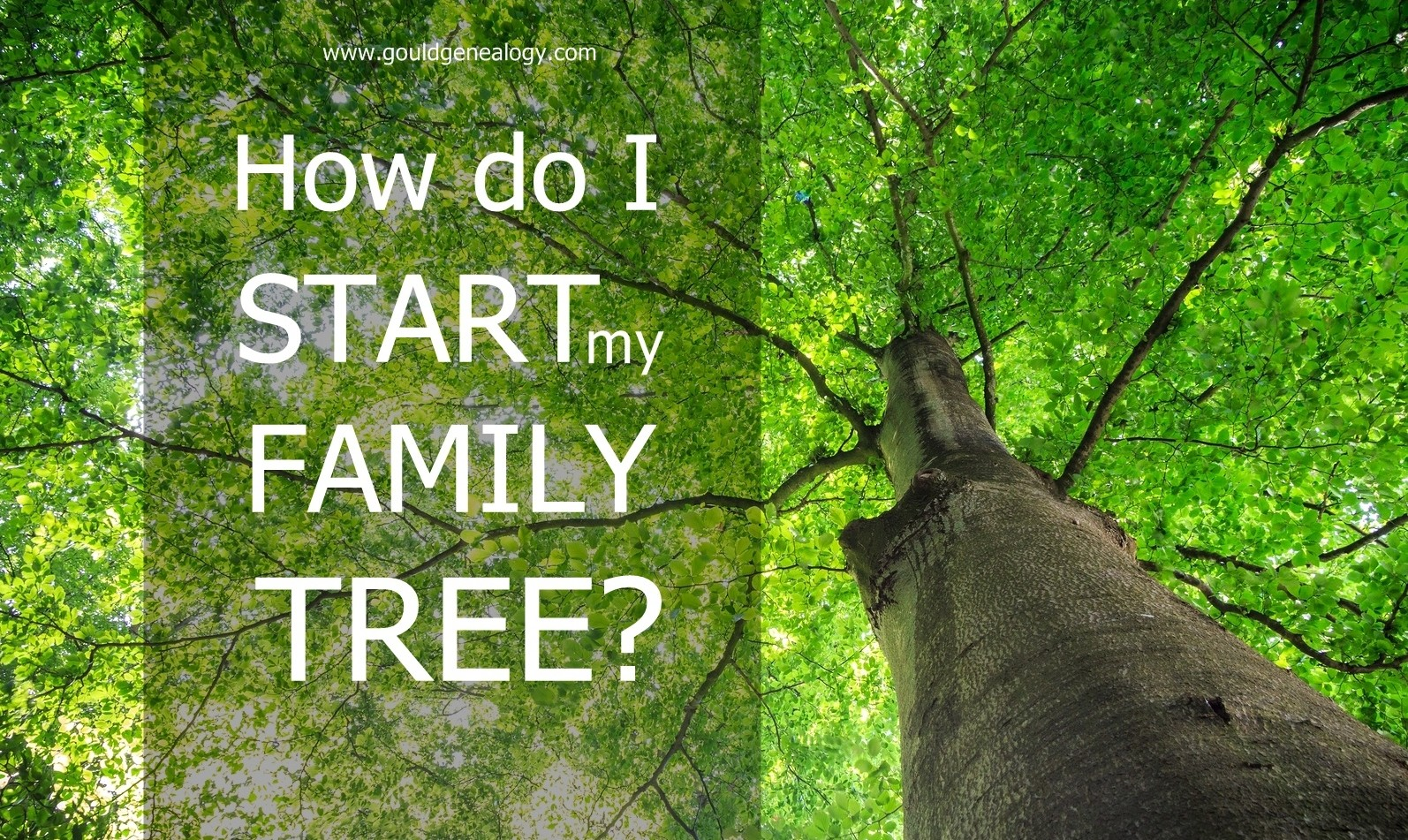How Do I Start My Family Tree?